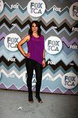 PASADENA, CA - 8 de JAN: Annie Parisse atende a FOX TV 2013 TCA inverno Press Tour no Langham caça