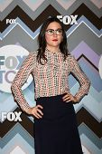 PASADENA, CA - JAN 8:  Shannon Woodward attends the FOX TV 2013 TCA Winter Press Tour at Langham Hun