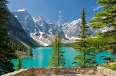 Fragment of Moraine Lake trail in Lake Louise, Alberta, Canada.