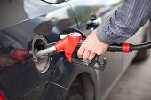 stock photo of gasoline station  - Driver inserting pumping nozzle with gasoline at the gas station - JPG