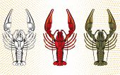 picture of crawfish  - vector set of colorful crawfish - JPG