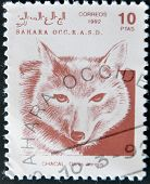 A Stamp Printed In Sahrawi Arab Democratic Republic (sadr) Shows Golden Jackal Canis aureus