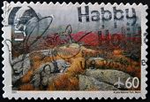 United States Of America - Circa 2001: A Stamp Printed In Usa Shows Acadia National Park, Maine