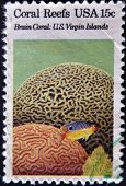 A stamp printed in the USA shows Coral Reefs Brain coral u.s. virgin islands