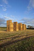 Straw Bale Landscape