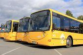 Yellow City Buses