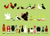image of farm  - Cute Cartoon Farm Animal Characters including Birds  - JPG