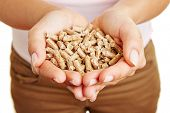 Woman holding many wood pellets in her hands
