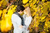 Happy couple have a romance in the fall  forest. Autumn set.