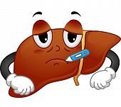 stock photo of liver  - Mascot Illustration Featuring a Sick Liver with a Thermometer in its Mouth - JPG