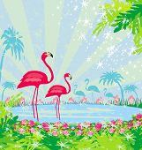Illustration With Green Palms And Pink Flamingo