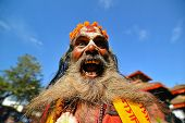 Sadhu Man With Long Beard