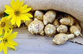 Jerusalem Artichokes With Burlap And Flowers On Board