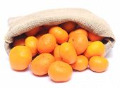 image of cleaving  - tangerines in sack isolated on a white background - JPG
