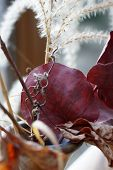 Dry flower arrangement