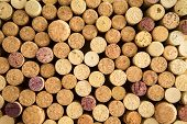 Background Texture Of Neatly Arranged Corks