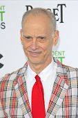 SANTA  MONICA - MAR 1: John Waters at the 2014 Film Independent Spirit Awards at Santa Monica Beach
