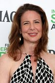 LOS ANGELES - MAR 1:  Robin Weigert at the Film Independent Spirit Awards at Tent on the Beach on March 1, 2014 in Santa Monica, CA