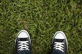 Canvas Sneakers On Grass, Top View