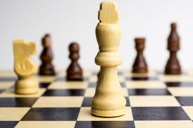 stock photo of cheval  - Chess board with white king and horse - JPG