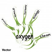 Vector conceptual abstract green ecology, conservation word cloud text in man hand or handprint on w