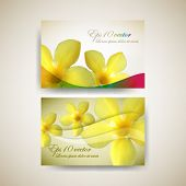 eps10 vector set of flower business card background