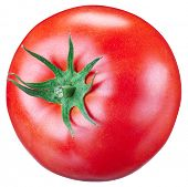 Tomato on a white background. File contains clipping paths.