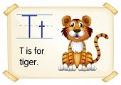 Illustration of a flashcard with letter T