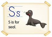 Illustration of a flashcard with letter S