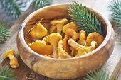 Chanterelles in wooden bowl