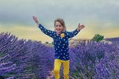 Happy child running along lavender farmland