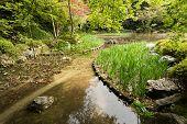 The garden with pond in Heian Jingu Shrine in Kyoto.