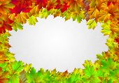 Background conceptual image with autumn leaves. Place for text
