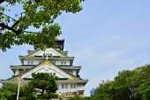 stock photo of shogun  - Osaka Castle Osaka city Japan in the summer  - JPG