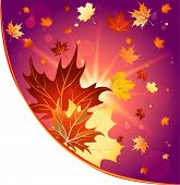 Autumn decoration with maple leaves. Raster version.