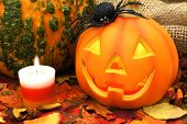 Halloween scene with Jack o Lantern