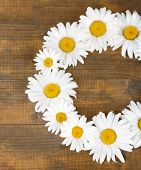 Chamomile wreath on brown wooden background