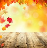 Autumn concept with empty wooden planks and falling leaves
