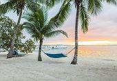 beach, summer and leisure concept - blue hammock on tropical beach