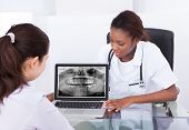 Dentist Explaining Jaw Xray To Patient