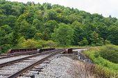 picture of trestle bridge  - Railroad trestle in the hills Spruce Knob - JPG