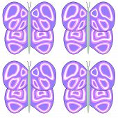 Large Purple, Pink and White Butterfly Pattern