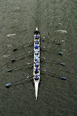 stock photo of crew cut  - An eight person shell with a coxswain rowing in races on Lake Washington. As they row in unison, the boat cuts through the water.