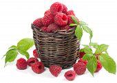 Raspberries In The Basket