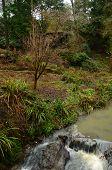 Pagoda and River