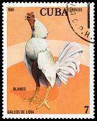 Vintage  Postage Stamp. Blanco Cock.