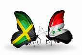 Two Butterflies With Flags On Wings As Symbol Of Relations Jamaica And Syria