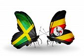 Two Butterflies With Flags On Wings As Symbol Of Relations Jamaica And Uganda