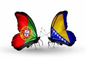 Two Butterflies With Flags On Wings As Symbol Of Relations Portugal And Bosnia And Herzegovina