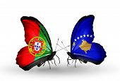 Two Butterflies With Flags On Wings As Symbol Of Relations Portugal And Kosovo